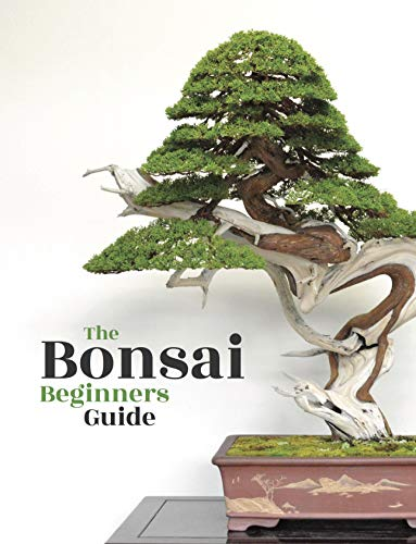 Bonsai: The Beginners Guide