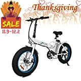 ECOTRIC Fat Tire Folding Electric Bike Beach Snow Bicycle 20' Ebike 500W Electric Moped Electric Mountain Bicycles 36V 12Ah Removable Lithium Battery (White Frame)