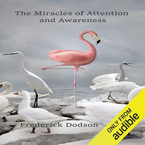 The Miracles of Attention and Awareness cover art