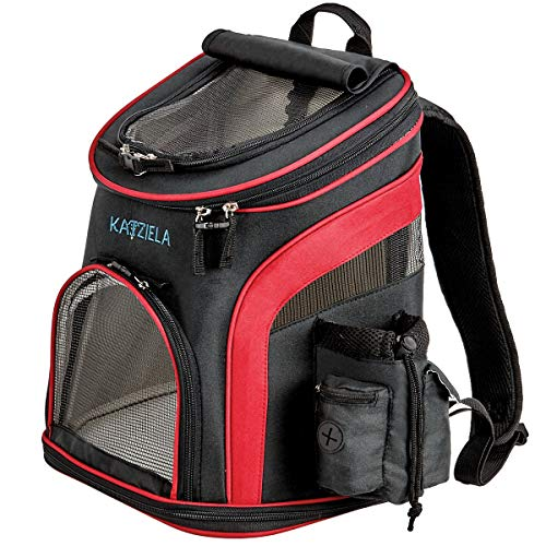 Katziela Pet Carrier - Soft Sided, Airline Approved Carrying Bag for Small Dogs and Cats, Front, Side and Top Mesh Ventilation Windows, Storage Pocket and Safety Leash Hook - Black