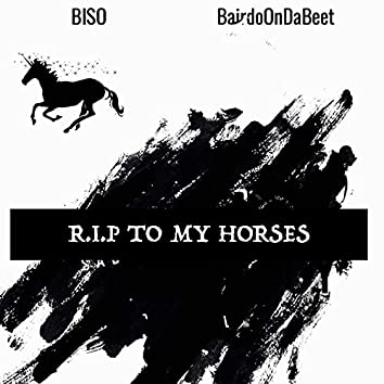 R.I.P TO MY HORSES
