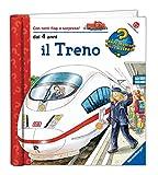 Il treno. Ediz. illustrata...