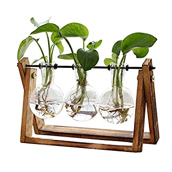 XXXFLOWER Plant Terrarium with Wooden Stand Air Planter Bulb Glass Vase Metal Swivel Holder Retro Tabletop for Hydroponics Home Garden Office Decoration - 3 Bulb Vase