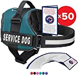 Service Dog Vest With Hook and Loop Straps and Handle - Harness is Available in 8 Sizes From XXXS to XXL - Service Dog Harness Features Reflective Patch and Comfortable Mesh Design (Teal, Large)