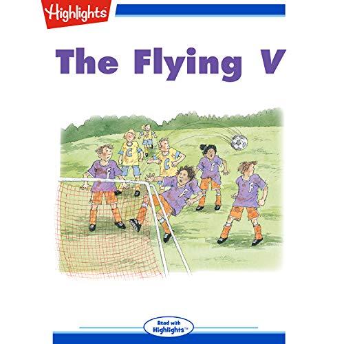 The Flying V. copertina
