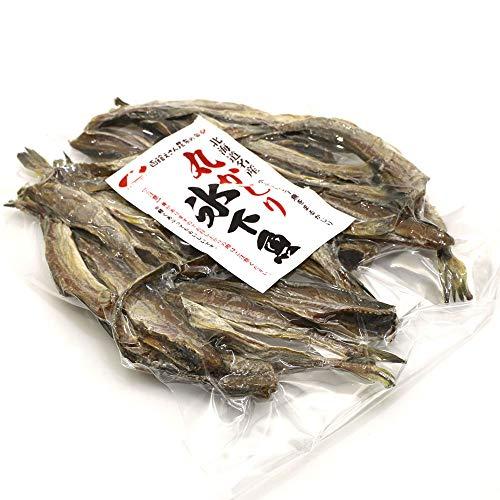 こまい珍味 氷下魚 (小) 丸かじり コマイ 100g 北海道産 小ぶりの 干しこまい 珍味 かんかい 氷下魚 干物 函館えさん昆布の会