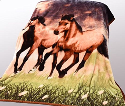 "Wild Animal Twin Horses Print Blanket , TV, Cabin, Couch,Plush,Warm, Bedcover Throw , Full Queen, 75""Wx90""H , Silky Mink Cozy, For Girls,Boys, Kids,Men,Women"