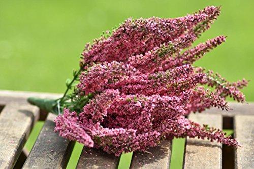 Unbekannt Künstliche Erika Calluna Heide Busch Pink 24 Blütenstände Herbstblume Herbstdeko