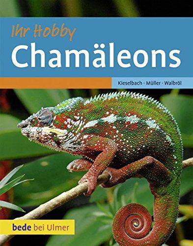 Chamäleons