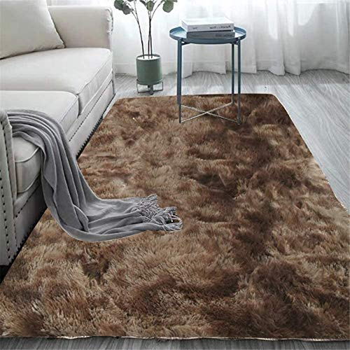 cozy living room area rug