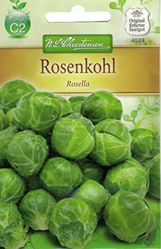 Chrestensen Rosenkohl 'Rosella' mittelfrühe Sorte