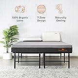 SleepyCat Latex 7 Inch 100% Organic Latex Queen Size Mattress