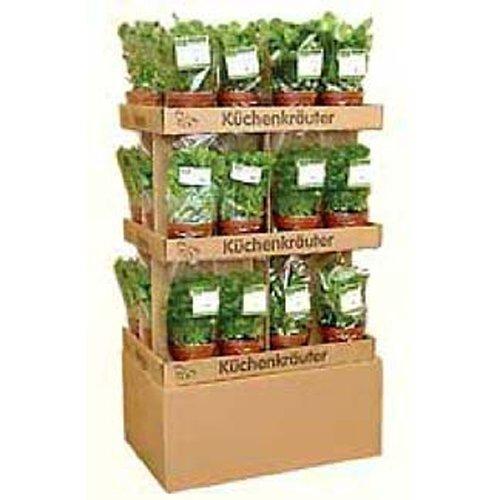 Obst & Gemüse Bio Kräutermischung Mediteraner Mix 8 Töpfe (1 x 1 Stk)