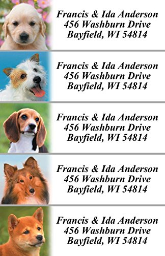 Photo Puppies Designer Assorted Rolled Address Labels with Elegant Plastic Dispenser Photo #3