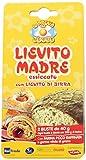 La Prova del cuoco Lievito MADRE essicato con Lievito di Birra - confezione con 2 Buste da 40 gr