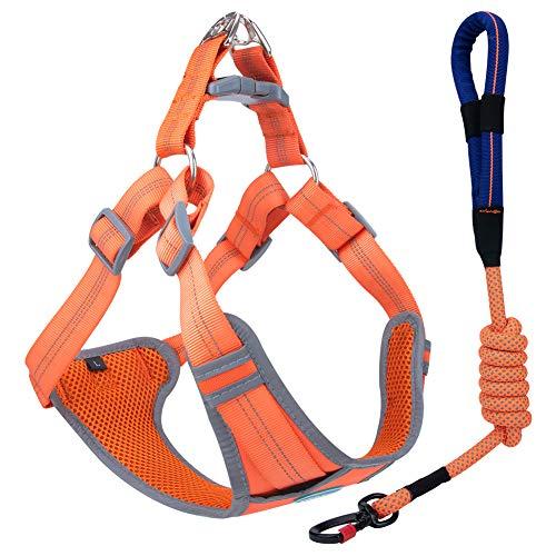 ThinkPet No Pull Front Clip-Gurtset - Gepolsterter, atmungsaktiver, reflektierender Westengurt, Reflektierende Hundeleine zum Laufen Laufen XXL Orange