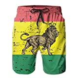 Harry wang Men's Rasta Cool Lion Jamaica Flag Beach Surfing Board Shorts Swim Trunks PantsSize L