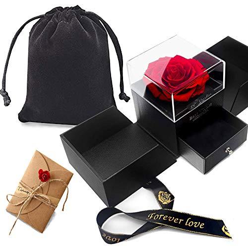 Geschenkbox Rosenbox, Die Schöne und das Biest Rose, Ewige ECHTE Rose, großer Blumen kopf, Handgemachte konservierte Rose, Samt Schmuck Tasche, Grußkarte, Schmuckschatulle Geschenk für sie