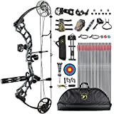 Topoint Trigon Compound Bow Full Package,CNC Milling Riser,USA Gordon Composites Limb,BCY String,19'-30' Draw Length,19-70Lbs Draw Weight,IBO 320fps (Ghost)