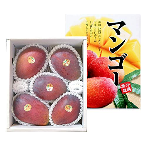 沖縄県産 アップルマンゴー 贈答用 約2kg