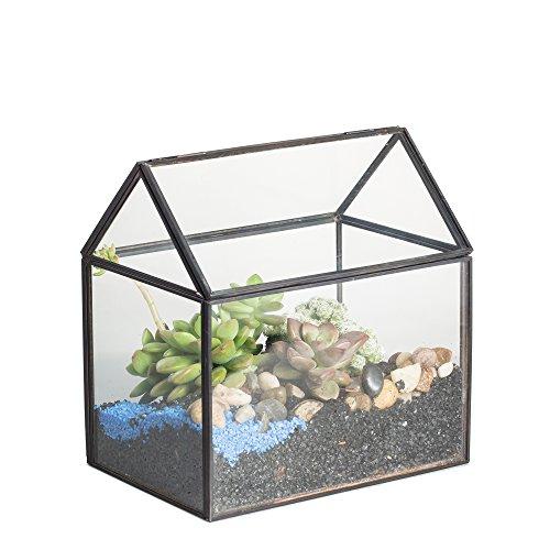 Terrario in vetro a forma geometrica, da tavolo, per piante grasse, felci e muschio