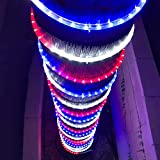 Russell Decor Christmas Season LED 200'-30' Rope Lights Blue Red White (200)