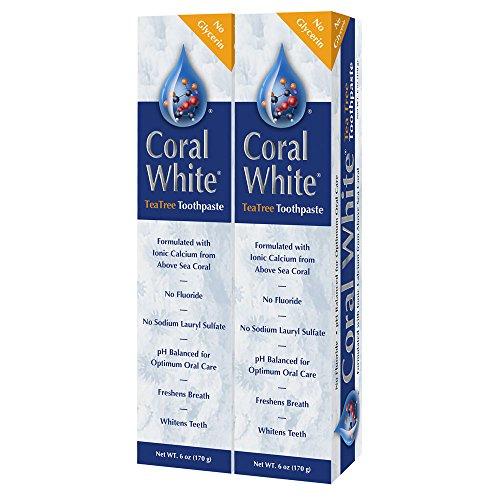 Coral LLC - Cinnamon Tea Tree Fluoride-Free Toothpaste - 6 Ounces (2-Pack)