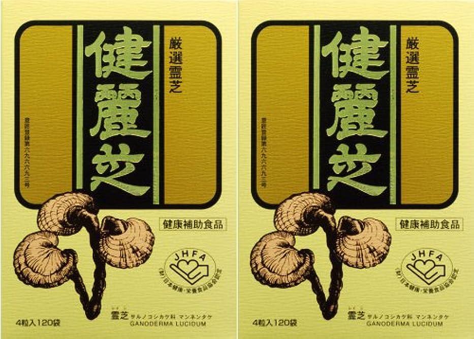 暗記する儀式橋健麗芝 4粒×120袋 【2箱セット】