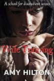 Wife Training: A school for disobedient wives
