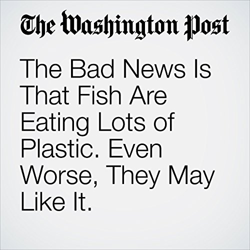 The Bad News Is That Fish Are Eating Lots of Plastic. Even Worse, They May Like It. copertina