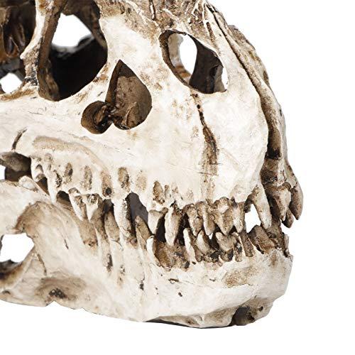 SALALIS Ornamentos del cráneo del Dinosaurio, apoyos del cráneo del Moldeado del Bastidor de la Resina para los hoteles para la Barra