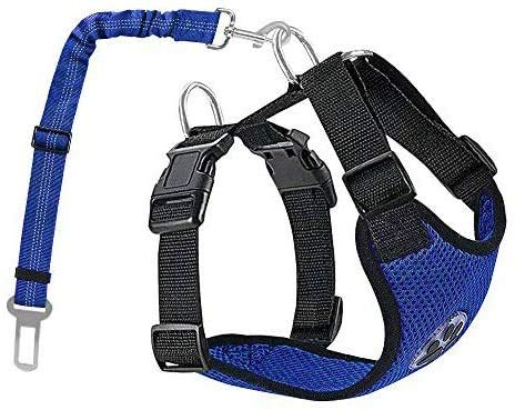 Lukovee Doppia pettorina per cani con cintura di sicurezza per tutte le attività quotidiane e sportive, il gilet da viaggio a quattro zampe, traspirante, cintura di sicurezza per auto (M, azzurro)
