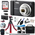 Sony W800 (Black) + 32GB Memory Card + Expo-Basic Accessory Bundle from