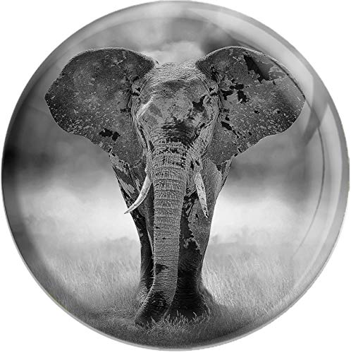 metALUm runder Acrylmagnet mit starkem Neodym - Magnet Elefant | Wildtiere #1301178