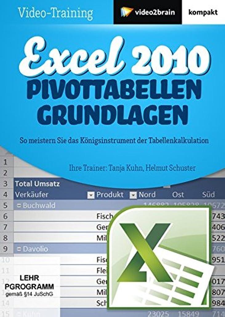 無駄だ衰えるバイソンExcel 2010: Pivot-Tabellen - Grundlagen: So meistern Sie das K?nigsinstrument der Tabellenkalkulation