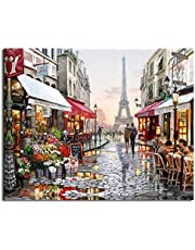DIY Painting By Numbers Wall Art Acrylic Paintings Handpainted Home Decor For Living Room 40x50cm