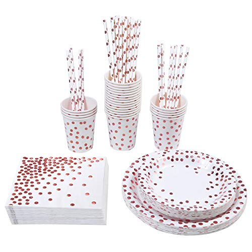 Aneco 146 Pieces Disposable Dinnerware Set Party Supplies Paper Tableware for 24 Guests, White With Rose Gold Foil (White)