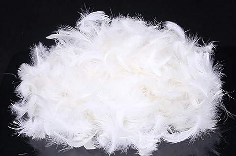 Amazon.com: Relleno de plumas de ganso a granel para hacer tus propios  edredones, almohadas, chaquetas, sacos de dormir y mucho más. : Arte y  Manualidades