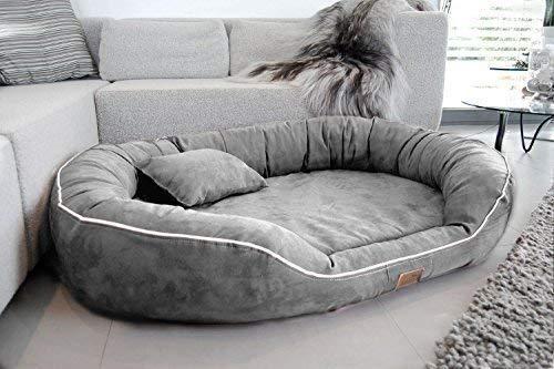 tierlando® Nonplusultra Marlon orthopädisches Hundebett mit Visco Plus Matratze in Velours! Soft-Lounge! Gr. M L XXL XXXL | 85 cm bis 220 cm (L 100 x 85 cm, 06| Grau)