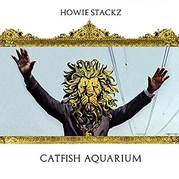 Catfish Aquarium