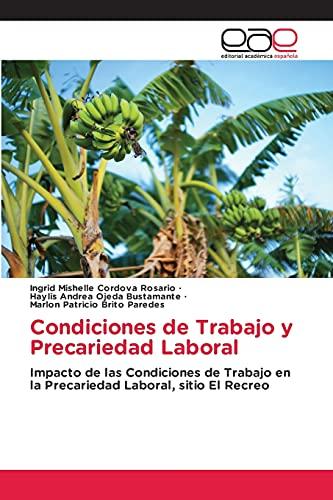 Condiciones de Trabajo y Precariedad Laboral: Impacto de las Condiciones de Trabajo en la Precariedad Laboral, sitio El Recreo