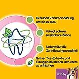 Pedigree DentaStix Fresh Hundesnack für kleine Hunde (5-10kg), Zahnpflege-Snack mit Eukalyptusöl und Grüner Tee-Extrakt, 10 Packungen je 7 Stück (10 x 110 g) - 4