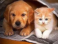 大人のためのDIY5Dダイヤモンドペインティングキットラウンドフルドリル-クリスタルラインストーン刺繡クロスステッチ家の装飾-かわいい子猫の子犬動物40x50cm