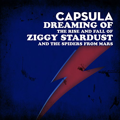 Dreaming Of The Rise And Fall Of Ziggy Stardust And The
