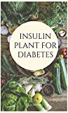 INSULIN PLANT FOR DIABETES (English Edition)