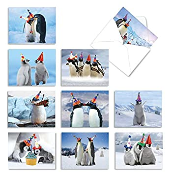 The Best Card Company - 10 Animal Birthday Cards with Envelopes  4 x 5.12 Inch  - Cute Boxed Notecards Bulk Bday Cards for Kids - Penguins and Greetings AM2951BDG-B1x10