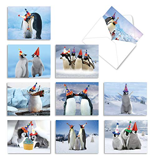 The Best Card Company - 10 Animal Birthday Cards with Envelopes (4 x 5.12 Inch) - Cute Boxed Notecards, Bulk Bday Cards for Kids - Penguins and Greetings AM2951BDG-B1x10