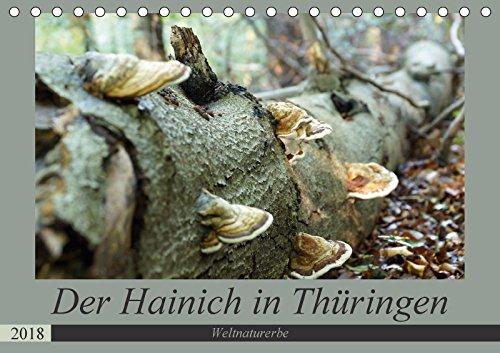 Der Hainich in Thüringen - UNESCO-Weltnaturerbe (Tischkalender 2018 DIN A5 quer): Der Nationalpark Hainich - das Herzstück der Urwaldkulisse in ... Natur) [Kalender] [Feb 13, 2017] Flori0, k.A.