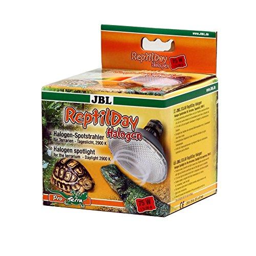 JBL ReptilDay Halogen 61843 Halogen-Spotstrahler mit Tageslicht-Vollspektrum, E27, 75 W