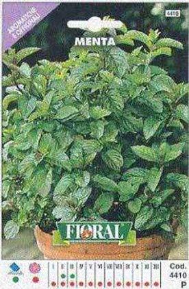 Sementi di piante aromatiche e officinali in bustina ad uso amatoriale (MENTA)